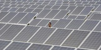 Zynergy to set up solar module at Nellore