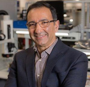 Ahmad Bahai
