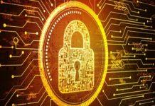 cellular IoT Security
