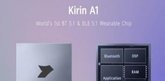 wearable chip