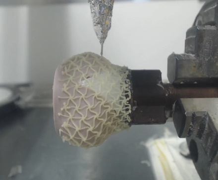 The eco-PEN300 printing the stent structure
