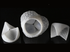 The design of the finished heart valves is inspired by human biology.