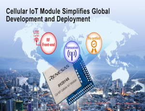 Module for Wireless IoT Networks